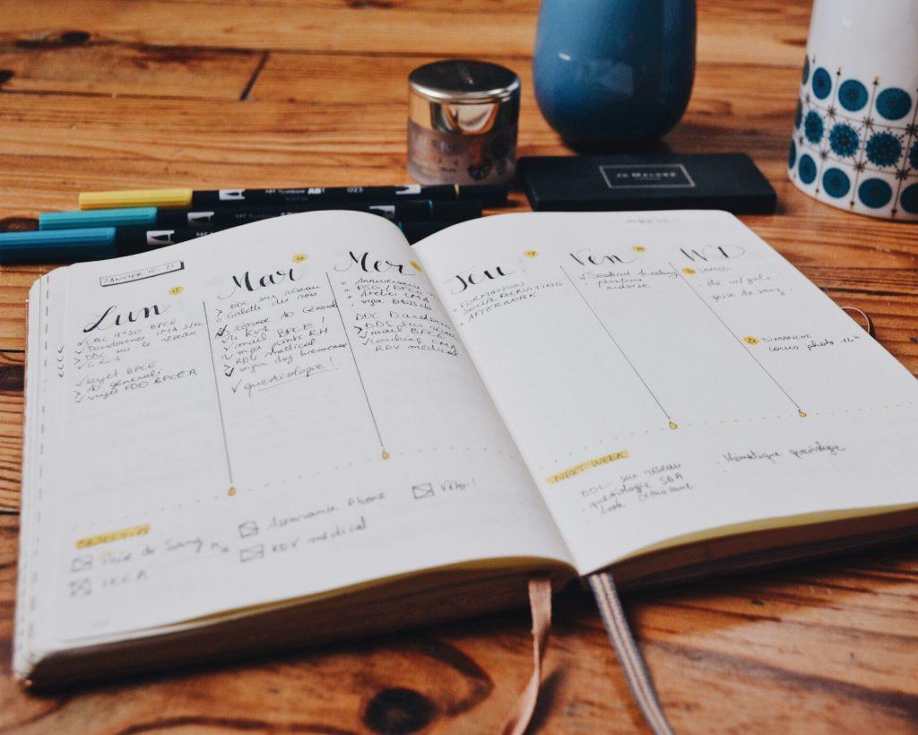 bujo février, weekly, bujo weekly, organisation, bullet journal